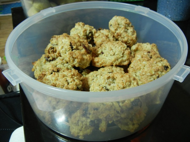 Vanishing Oatmeal Cookies 019