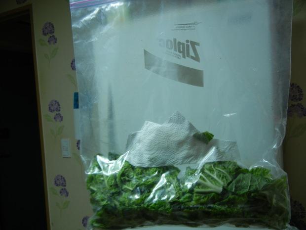 Warm Salad 001